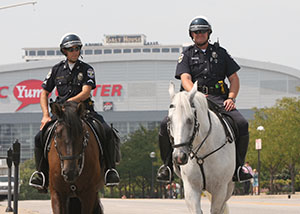 Adopt a Horse – Louisville Metro Police Foundation